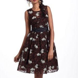 Anthropologie Tracy Reese Brown/Black Velvet Dress